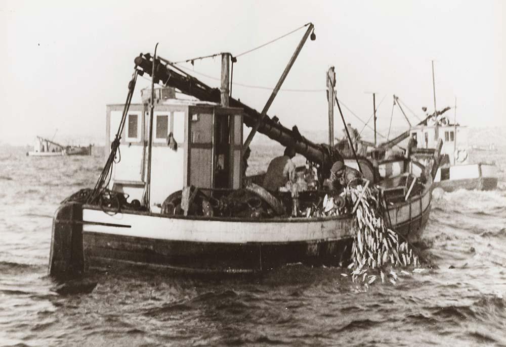 Sogndalstrand seilskutetiden, fiske